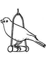 Canary-birds-coloring-pages-13
