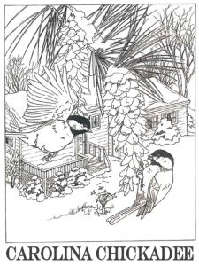 Chickadee-birds-coloring-pages-7