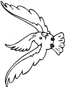 Cockatoos-birds-coloring-pages-4