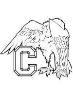 Condors-birds-coloring-pages-11