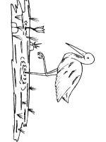 Cranes-birds-coloring-pages-14
