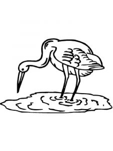 Cranes-birds-coloring-pages-16