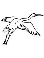 Cranes-birds-coloring-pages-5
