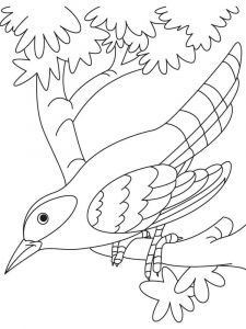 Cuckoos-birds-coloring-pages-6