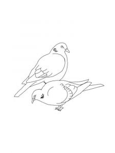 Doves-birds-coloring-pages-3