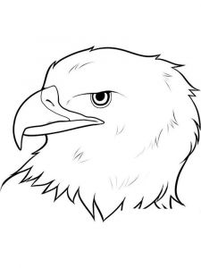 Eagle-birds-coloring-pages-16