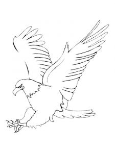 Eagle-birds-coloring-pages-23