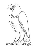 Eagle-birds-coloring-pages-6