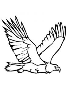 Eagle-birds-coloring-pages-9