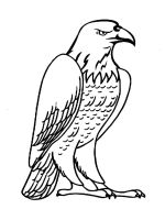 coloring-pages-Eagle-1