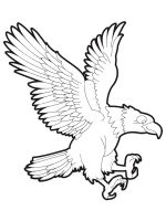 coloring-pages-Eagle-12