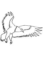 coloring-pages-Eagle-13
