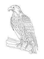 coloring-pages-Eagle-4