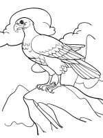 coloring-pages-Eagle-9