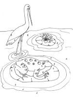 Egrets-birds-coloring-pages-2