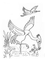 Egrets-birds-coloring-pages-3
