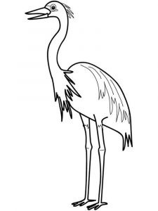 Egrets-birds-coloring-pages-6