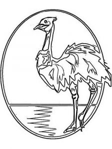 Emu-birds-coloring-pages-1