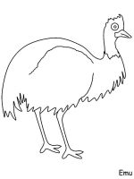 Emu-birds-coloring-pages-2