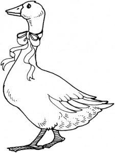 Gooses-birds-coloring-pages-11