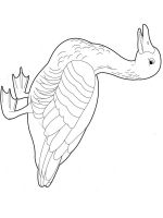 Gooses-birds-coloring-pages-14