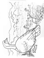 Gooses-birds-coloring-pages-16
