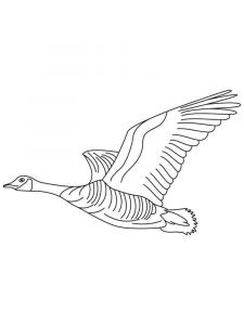 Gooses-birds-coloring-pages-6