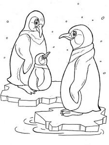 Penguins-birds-coloring-pages-6