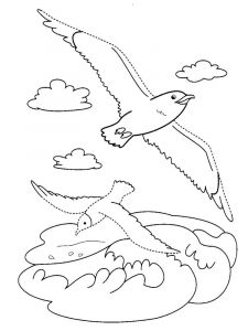Seagulls-birds-coloring-pages-10