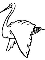 Stork-birds-coloring-pages-13