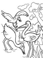 Stork-birds-coloring-pages-5
