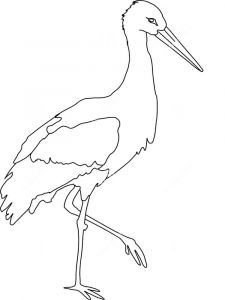 Stork-birds-coloring-pages-7