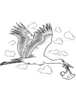 coloring-pages-Stork-6