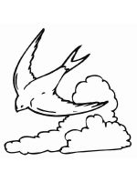 swallow-birds-coloring-pages-15