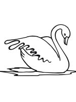 coloring-pages-Swans-12