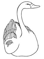 coloring-pages-Swans-5