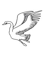 coloring-pages-Swans-8