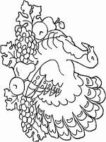 Turkeys-birds-coloring-pages-13