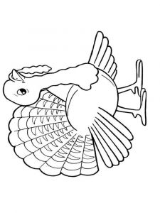 Turkeys-birds-coloring-pages-3