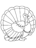 Turkeys-birds-coloring-pages-7