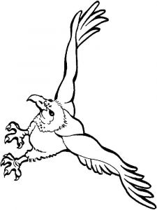 Vultures-birds-coloring-pages-2