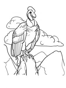 Vultures-birds-coloring-pages-3