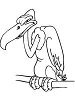 Vultures-birds-coloring-pages-8