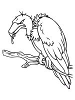 coloring-pages-Vultures-1