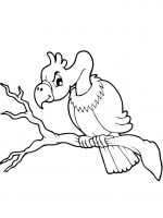 coloring-pages-Vultures-2