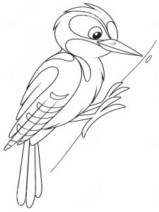 Woodpeckers-birds-coloring-pages-10
