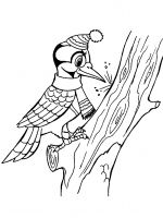 coloring-pages-Woodpeckers-11