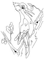 coloring-pages-Woodpeckers-5