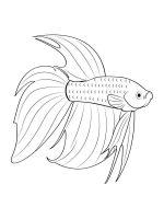 Aquarium-Fish-coloring-pages-16