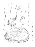 Aquarium-Fish-coloring-pages-6